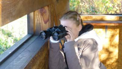 Veille touristique consultant tourisme
